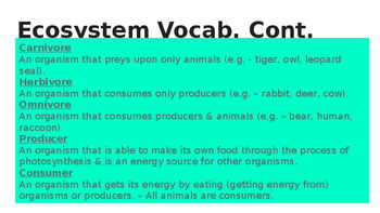5th Grade Ecosystem Vocabulary