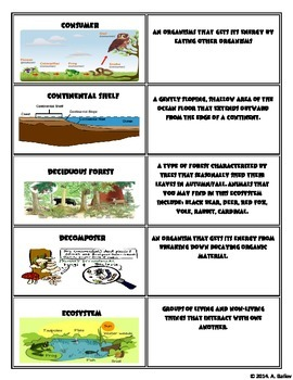 Complete Set of 5th Grade Ecosystem Vocabulary Cards