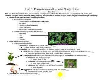 5th Grade Ecosystems Unit