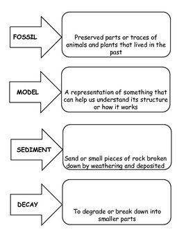 5th Grade Essential Vocabulary 5.7D Fossils