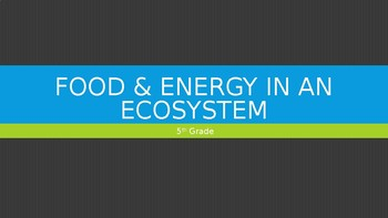 5th Grade Food Energy in an Ecosystem