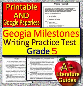 5th Grade Georgia Milestones Writing Practice Test - Opinion Essay Prompt