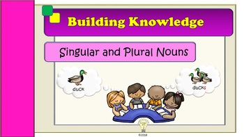 Singular and Plural Nouns Presentation