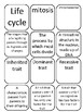 5th Grade Inherited Traits Vocabulary Packet