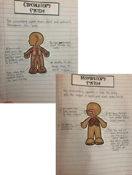 5th Grade Interactive Notebook: Human Body & Organ Systems