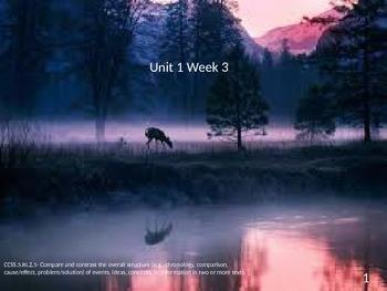 5th Grade McGraw-Hill Unit 1 Week 3 Lesson