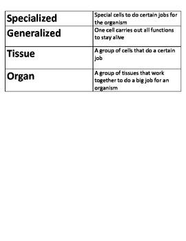 5th Grade NC Essential Standards Sci. Genetics/ Heredity Vocabulary Flash Cards