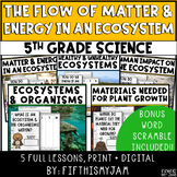 Energy and Matter in an Ecosystem   Full Unit Science BUNDLE