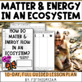 Energy and Matter in an Ecosystem   Full Guided Science Le