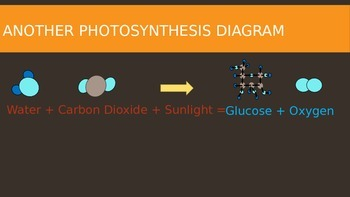 5th Grade Photosynthesis Power Point