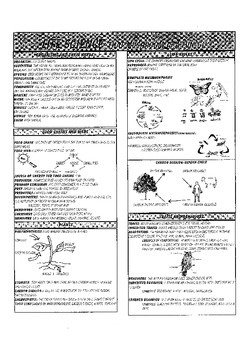 5th Grade Science Study Guide
