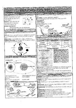 5th Grade Science Study Guide