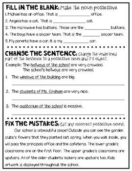 5th Grade Writing: Usage & Mechanics - Possessive Nouns
