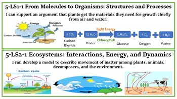 5th NGSS I Can Standards Posters