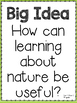 5th grade WonderWorks Reading Supplement- Unit 3 Week 2