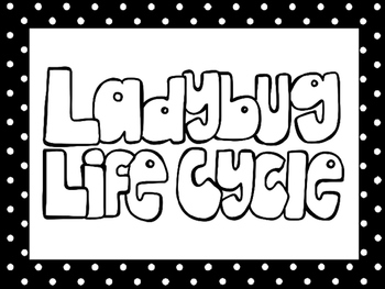 picture about Ladybug Printable titled 6 Black and White Ladybug Lifestyle Cycle Printable Posters/Anchor Charts.