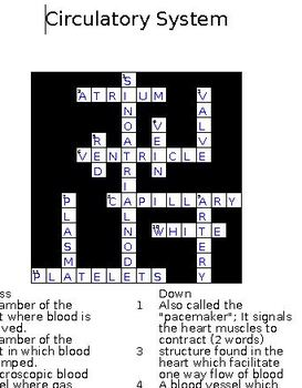 6 Cross Word Puzzles with keys for HUMAN BODY SYSTEMS