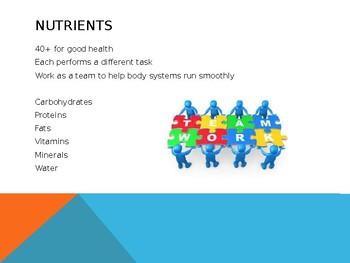 6 Essential Element/Nutrients Powerpoint