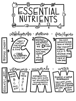 6 Essential Nutrients Coloring Page