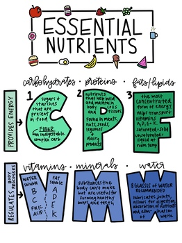 6 Essential Nutrients Poster