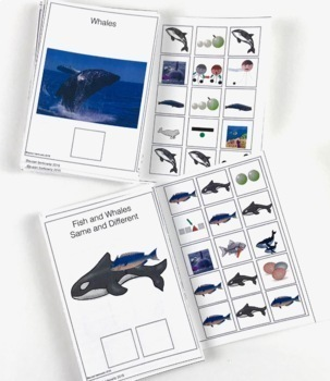 6 Informational Text Interactive Books Bundle for speech and special ed