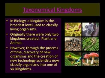 6 Kingdoms of Living Organisms Lesson