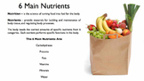 6 Main Nutrients Free Sampler