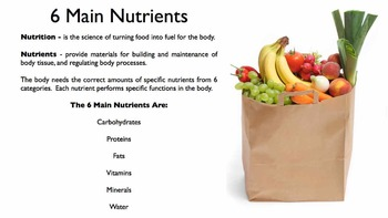 6 Main Nutrients Free Sampler