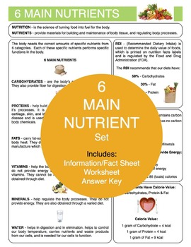 6 Main Nutrients Content Sheet, Worksheet and Answer Key