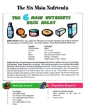 6 Main Nutrients Game / Activity
