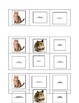 6-Square Animal Bingo