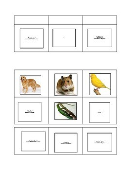 Small, 6-Square Animal Bingo