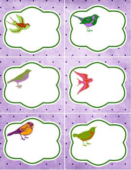 6 cute brightly colored BIRD themed LABELS, classroom organization storage