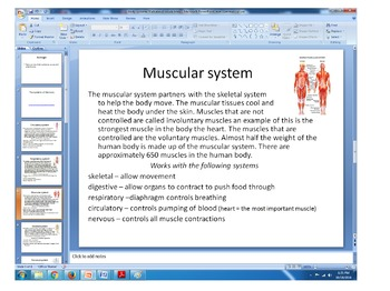 6 major body systems gallery walk note taking and question