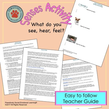 6th Grade Apply Mindfulness In Real Life Situations Lesson