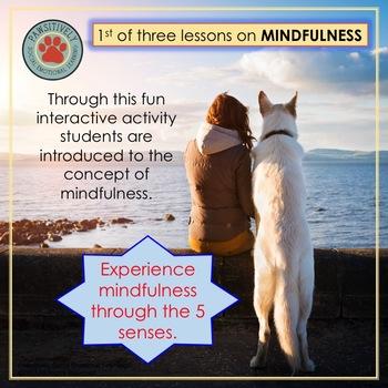 6th Grade Mindfulness Skills Activity