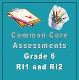 6th Grade Common Core Reading/ELA Test Prep RI1 and RI2