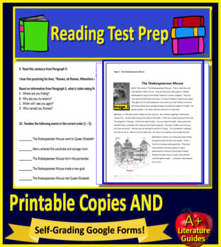6th Grade Engage NY ELA Test Prep Practice Tests New York State