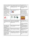 6th Grade Introductory Math Menu