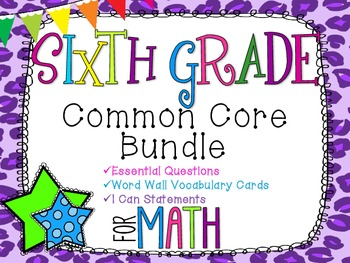 6th Grade Math Common Core Bundle! Everything You Need! *Cheetah Print*