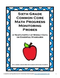 6th Grade Math Common Core Progress Monitoring Assessment Pack