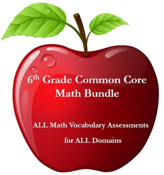 6th Grade Math:  Vocabulary Assessments for ALL Domains BUNDLED