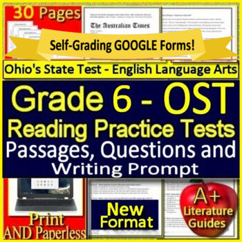 6th Grade Ohio State Test Prep Practice Tests for ELA - 2019 OST Format