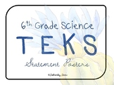 """6th Grade Science TEKS """"I Can"""" Statement Posters {Cool Cactus Theme}"""