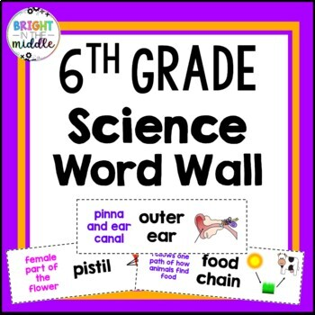 6th Grade Science Vocabulary Word Wall