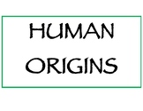 6th Grade Social Studies Tennessee Human Origins vocabulary and standards