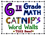 6th Grade TEKS Based Math Word Wall