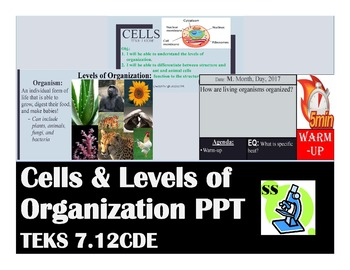 Cells & Levels of Organization PPT (TEKS 7.12CDE)