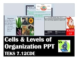 Cells & Levels of Organization PPT (TEKS 7.12CDE)