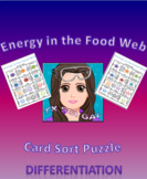 7.5 Energy in the Food Webs Card Sort Puzzle